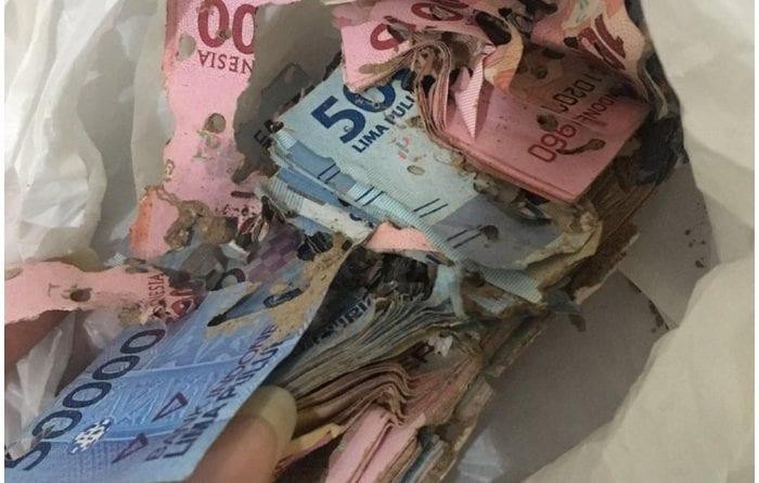 Así encontraron la bolsa con dinero de la abuelita.