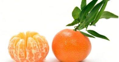 La mandarina es un fruto de origen asiático, abundante actualmente en las zonas tropicales de América.