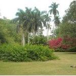 Jardin Botanico Nacional de La Habana