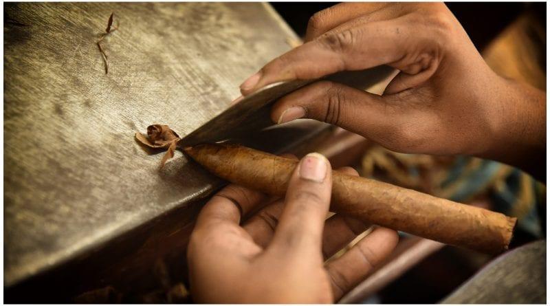 habano cubano - jpg