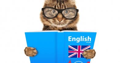 curso ingles gratis online