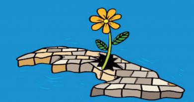 Todo sobre el Nuevo Plan económico y social para la Cuba post-coronavirus (+tabloide)