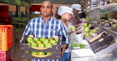Cubanos con trabajo en el extranjero deberán pagar impuestos