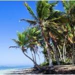 Planes Punta Cana - foto