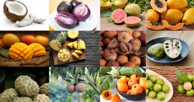 Las 13 frutas cubanas más populares y deliciosas