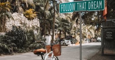 Las 15 mejores excursiones en Cancún: misterio, aventura y belleza